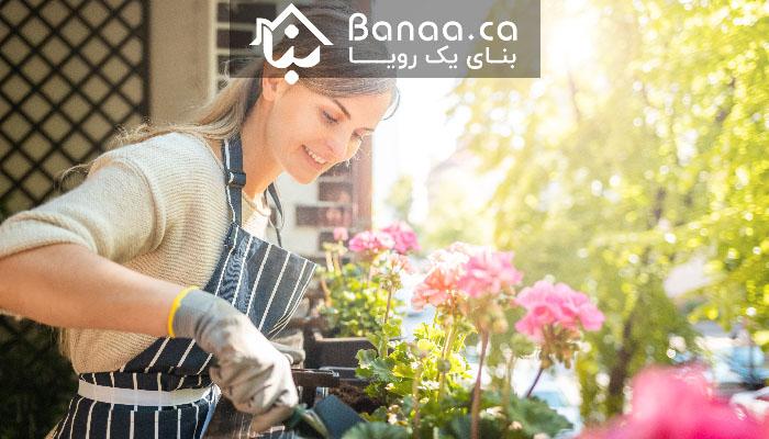 آمار خانهها در تورنتو در ماه جون؛ قیمتها بالا رفته و معاملهها افزایش یافته است